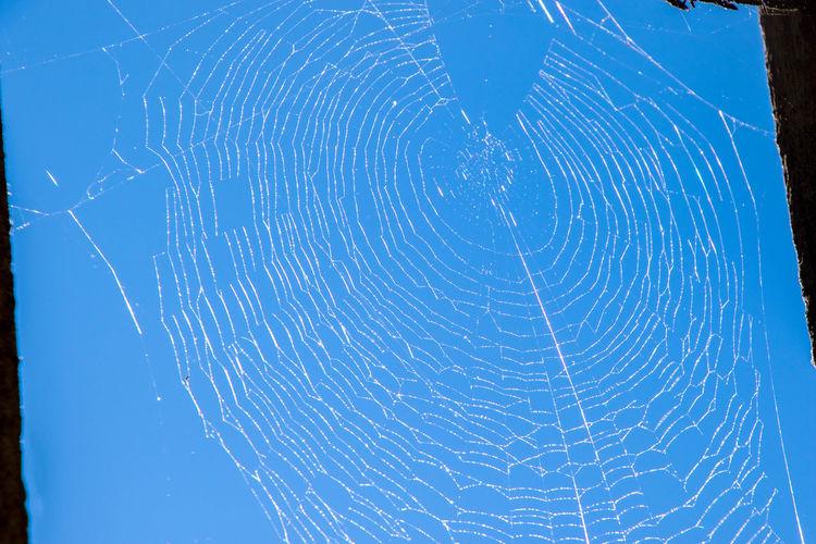 Full frame shot of spider web against blue sky