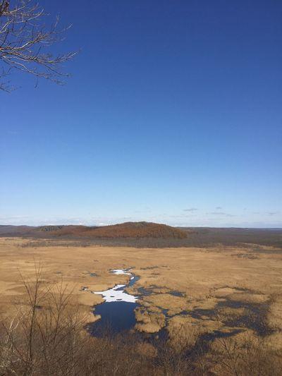Wetland No