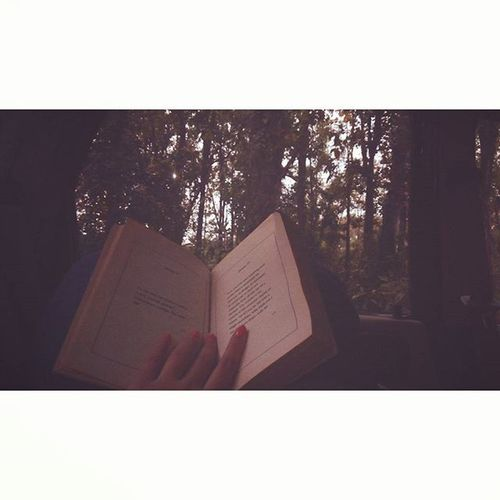 In the woods she loses herself, once and for ever. Shadowandlightseries Shadowplay Woodsandbooks Bookstagram Bookphotography Bibliophile  Booknerd Bookworm InstaBooks VSCAM Mobilephotography Vscoreads