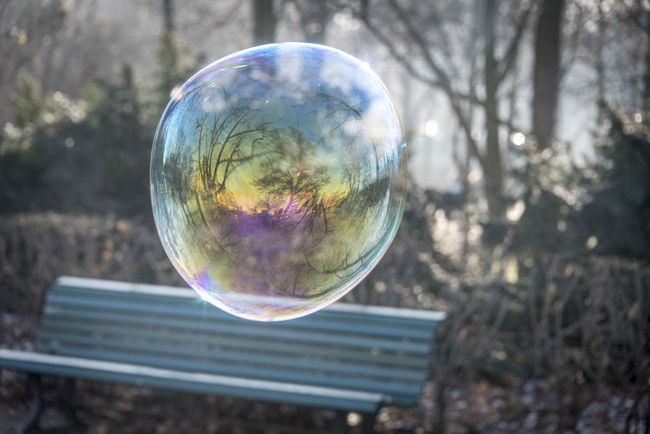 The beauty of photography is, it unfolds the beauty of world for you in a way you have never imagined before - ✍️Code Nemesis ✍️ Bubble Water Bubble Water Bubbles Water Reflections Reflection Focus On Foreground Sphere Mid-air Soap Sud Fragility Bubble Wand Tree Soap Bubbles Soapbubble Bench Benches In The Park Park Close-up Finding New Frontiers Exceptional Photographs Leisure Activity No People Enjoying Life Outdoors Nature