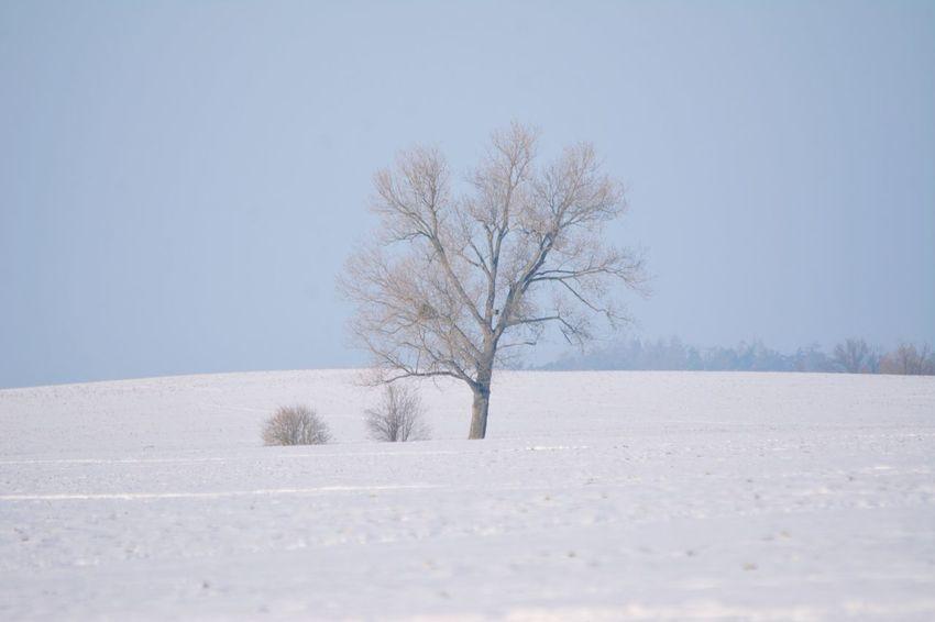 Winter auf dem Land. Schön Kalt im Schnee