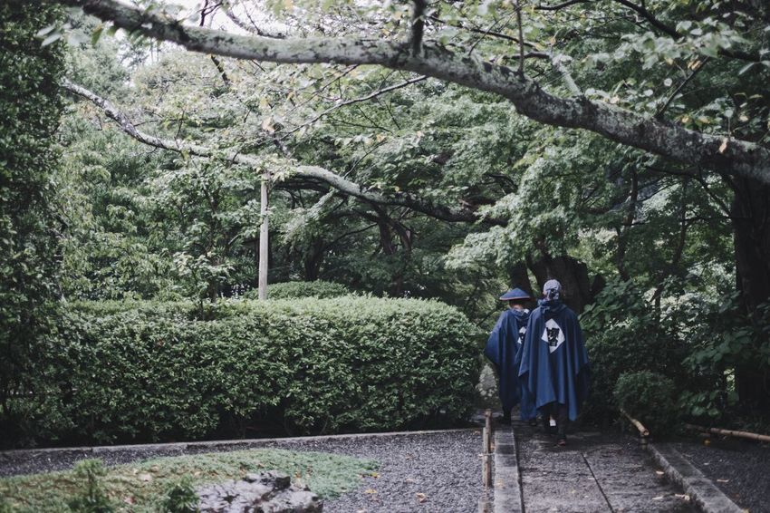 Japanese  Streetphotography Light And Shadow Snap Vscocam Nature VSCO