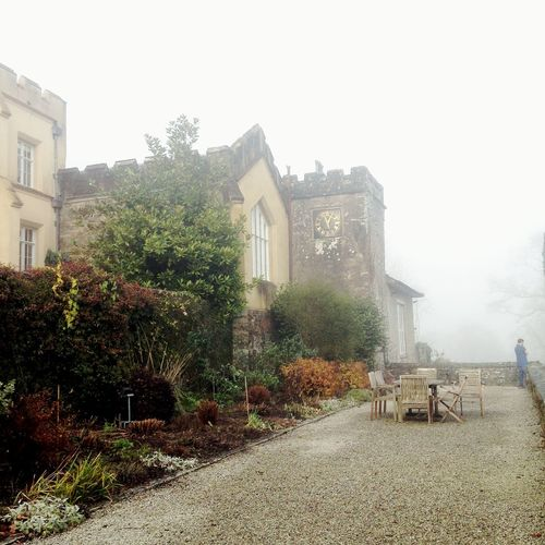 Architecture Building Exterior Built Structure Castle View  Day Foggy Morning Misty Morning Nature No People Outdoors Sky Tree