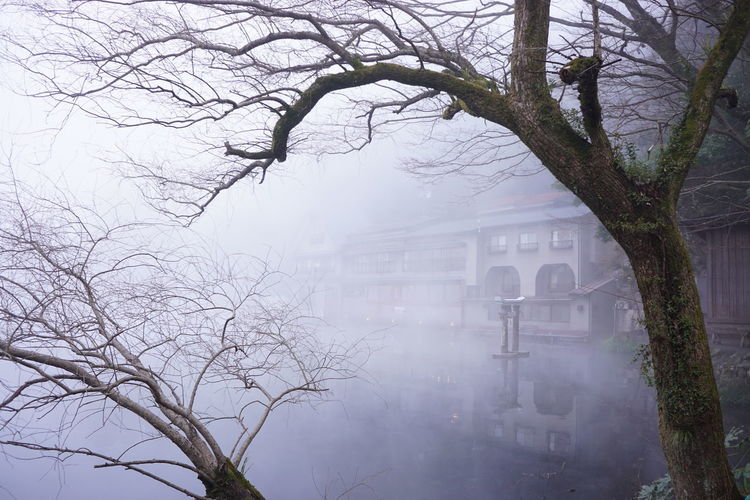 Winter Lake Water Japan Kinrinko Lake Yufuin Foggy Morning 金鱗湖 First Eyeem Photo
