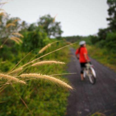 Bikeintrang Trangbike Snailbike Snailbicyclegang cycling trang