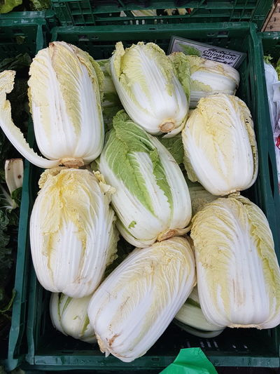 Chinakohl Chinakohl Chinese Cabbage Vegetable Close-up Food And Drink For Sale Farmer Market Market
