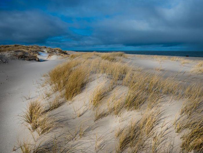 am Sylter Ellenbogen Cloud - Sky Sky Scenics - Nature Beauty In Nature Land Nature Tranquility No People Sea Water Tranquil Scene Environment Beach Grass Plant Sand Landscape Day Marram Grass Outdoors
