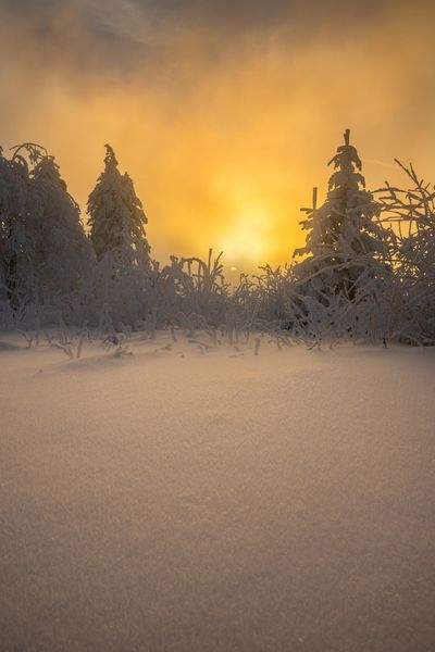 Beauty In Nature Cold Temperature Day Field Landscape Mountain Nature No People Outdoors Scenics Sky Snow Sunset Tranquil Scene Tranquility Tree Winter