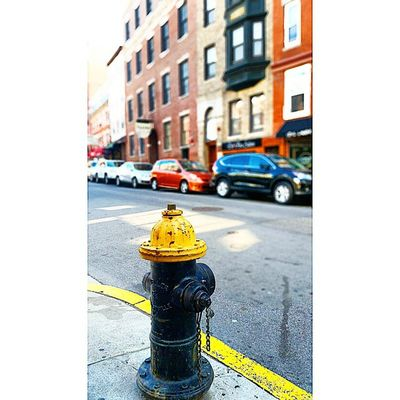 Boston Streets I guess I like their fire hydrants ..