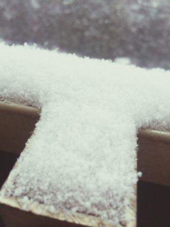 Let It Snow Snow Snow ❄