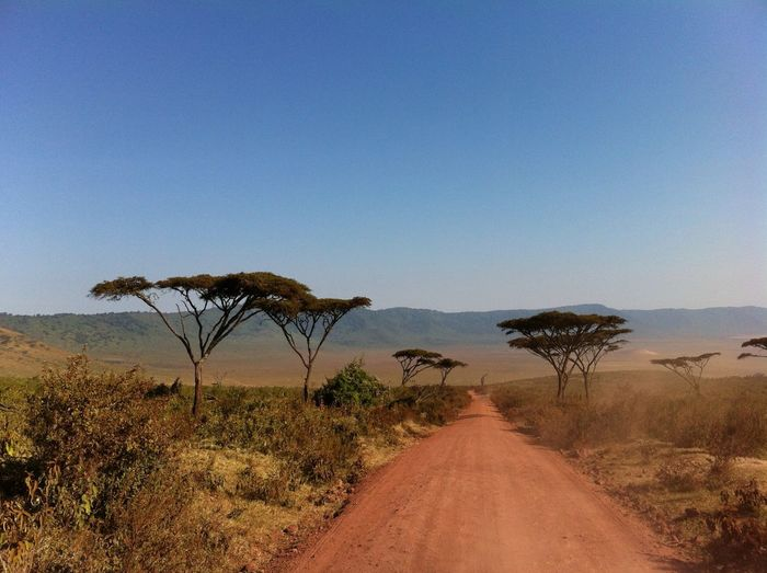 Safari Kenya Adventure African Landscape African Road Beauty In Nature Day Landscape Nature No People Non-urban Scene Outdoors Safari Adventure Scenics