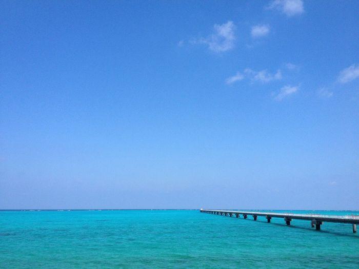 伊良部島 Irabujima にある 下地島空港 Shimojishima Airport の 珊瑚礁 Coralreef Coral Reef で囲まれた海岸からの眺め。たまに、一日をここで過ごす人も見かける。 Sea Sky Blue Emerald Green Water Scenics Horizon Over Water Beauty In Nature Tranquil Scene Tranquility Clear Sky From My Point Of View 道路脇の風景とはとても思えない。 Street Photography EyeEm Nature Lover EyeEm Best Shots