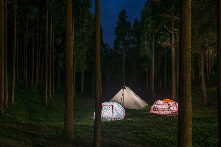 Tent on field against trees at night