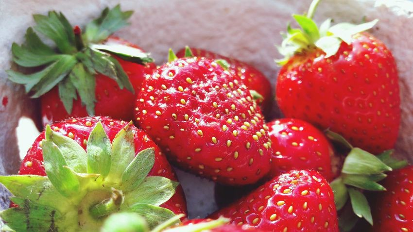 Red Fruit Strawberry Food Freshness Food And Drink Leaf Close-up Healthy Eating No People Plant Flower Nature Sweet Food Day Outdoors