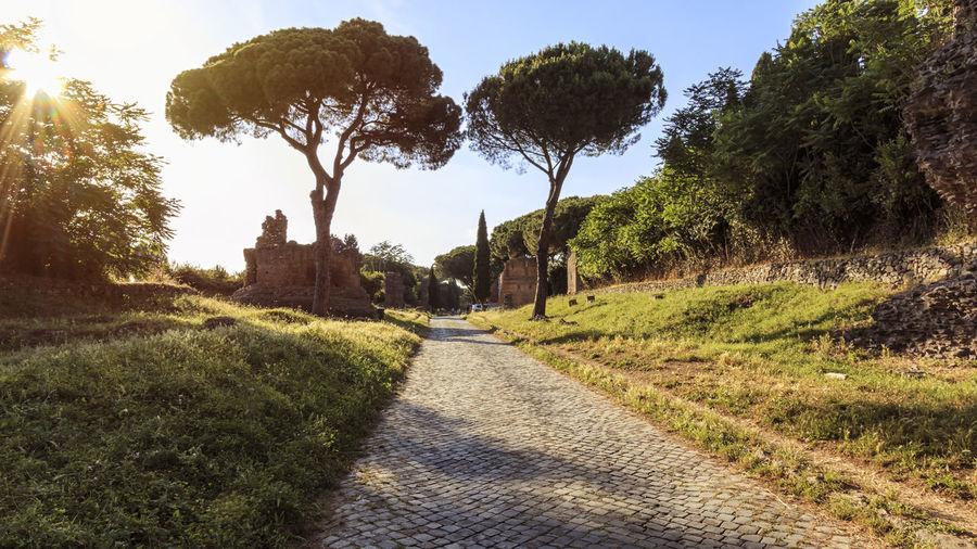 Ruins of the ancient Via Appia (Appian Way) in Rome Appian Way Coliseum Quirinale Rome Via Appia Antica Viminale Europe Fori Romani Italy Trevi
