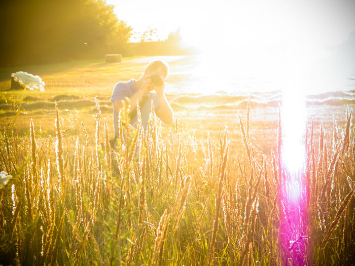 Beauty In Nature Day Domestic Animals Field Grass Grassy Growth Landscape Landscape_photography Lens Flare Nature No People Our Best Pics Outdoors Plant Sky Sun Sunbeam Sunlight Sunlight Sunny Sunset Mood Sunshine Tranquil Scene Tranquility