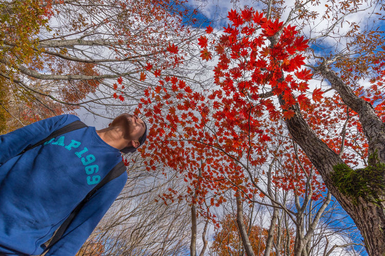 Low section of man with autumn tree against sky