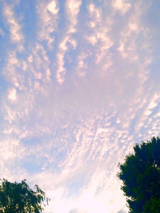 Nightfall Skyporn Clouds And Sky Cloudporn beautiful evening