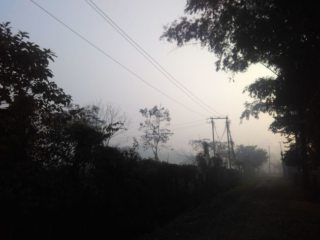 In the morning, Fog No Edit/no Filter The Week on EyeEm The Week Of Eyeem The Week on EyeEm KD Click 👍 Electricity Pylon Power Supply No People Day Sky Nature Outdoors