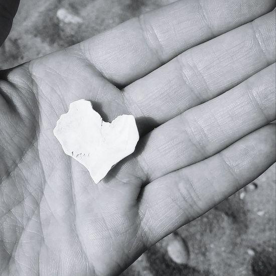 Hearts In Nature Beachlove Heartrockcafe