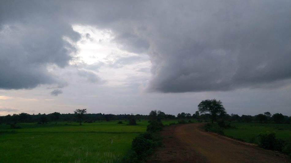 When you see a face in the clouds... Cloud - Sky Clouds And Sky Cloud Cloudy Cloudy Sky Cloudy Day Greeen Fields Crop  Face In The Clouds Face In The Sky Face Mobilephotography Mobile Photography Lenovo Photography Lenovo K6 Power India Landscape Rainy Days