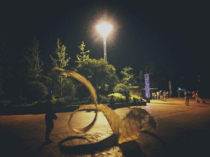 View of illuminated trees