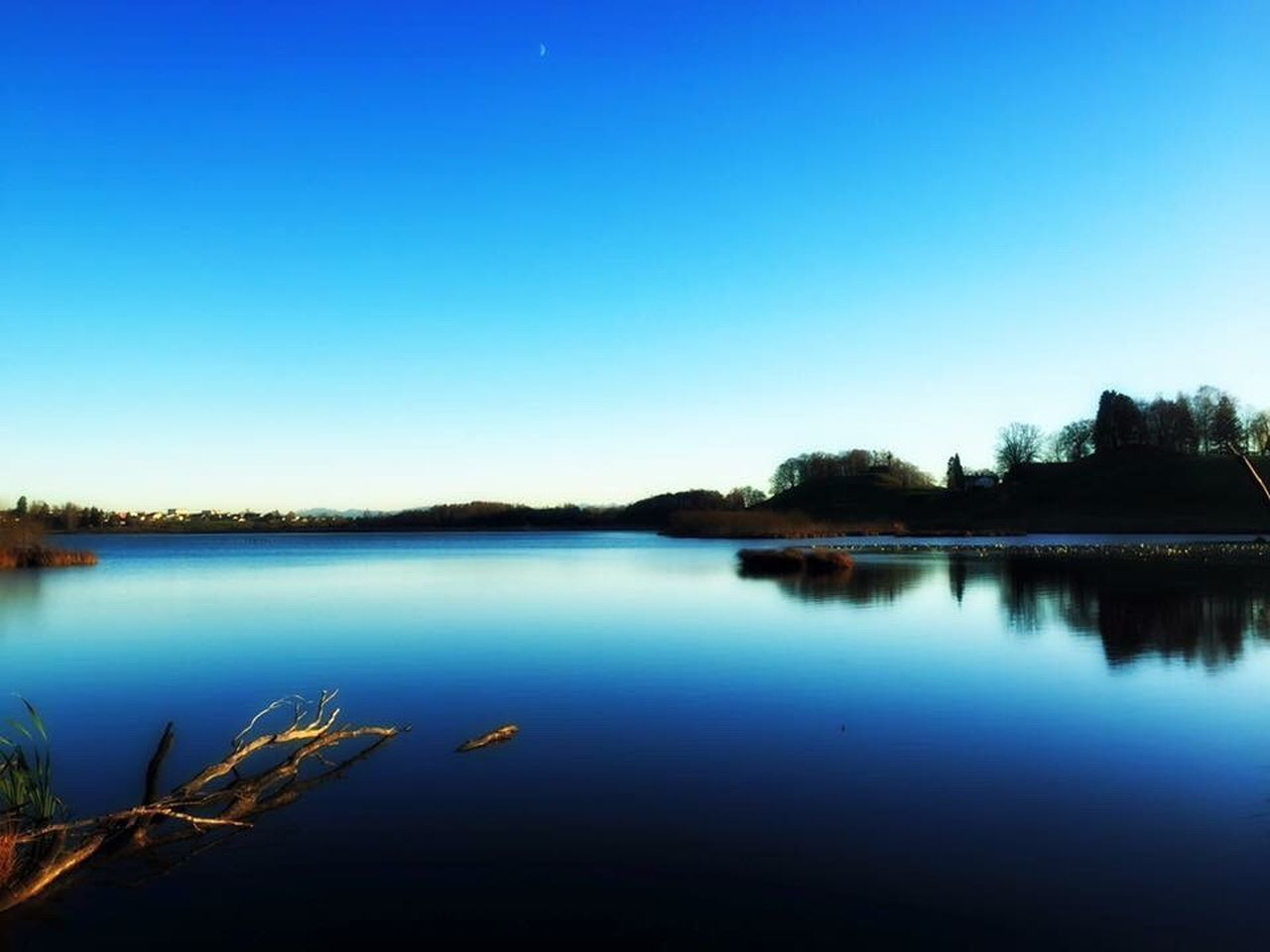 water, lake, tranquil scene, reflection, tranquility, nature, beauty in nature, scenics, blue, copy space, tree, clear sky, outdoors, no people, standing water, day, sky