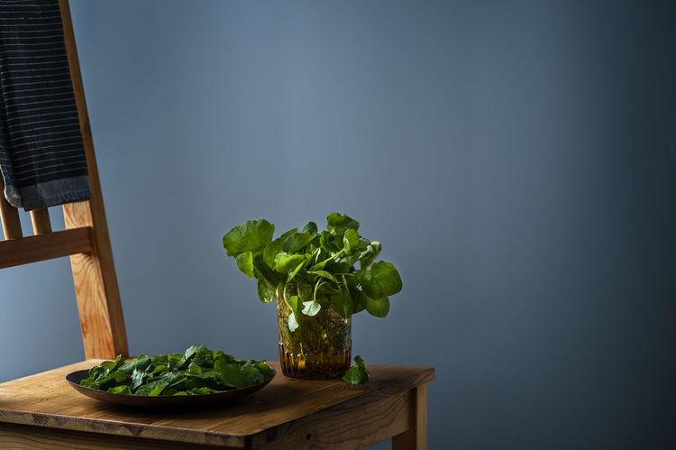 Fresh watercress Detox Green Salad Watercress Winter Fresh Spring Springtime