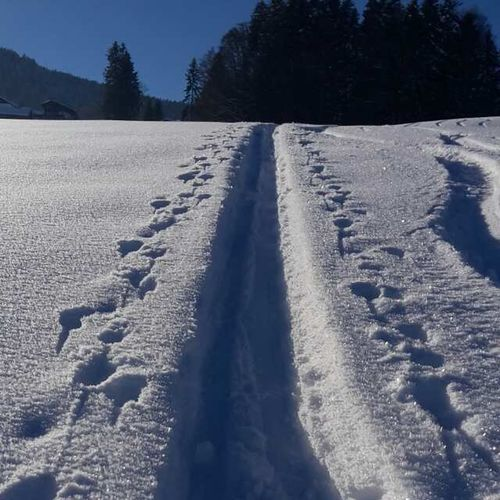 Snow tracks in the austrian mountains (2017) Snow Winter Cold Temperature Landscape Nature Outdoors Beauty In Nature Powder Snow No People Day EyeEmNewHere