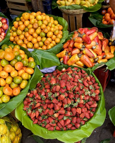 Las frescas Antigua Guatemala Fresh On Eyeem  Fresh Produce Guatemala 🇬🇹 Abundance Business Choice Food Food And Drink For Sale Freshness Fruit Healthy Eating High Angle View Large Group Of Objects Market Market Stall Street Market Wellbeing Freshness Variation Market Business Retail