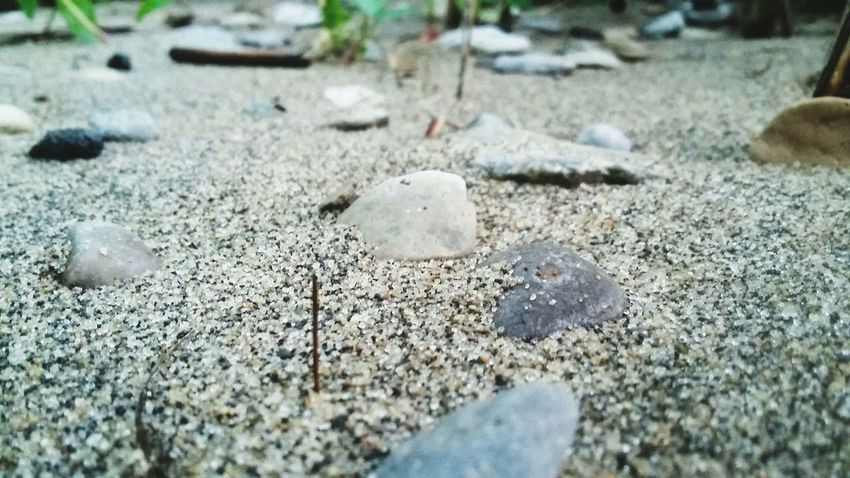 Southern Ontario Ontario Backgrounds High Angle View Close-up Shore Pebble Beach Sand Pebble