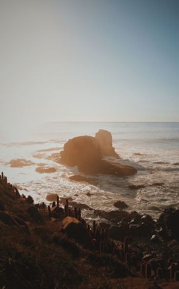 Beach Beauty In Nature Clear Sky Horizon Horizon Over Water Land Motion Nature No People Rock Rock - Object Rock Formation Scenics - Nature Sea Sky Solid Stack Rock Tranquil Scene Tranquility Water Wave