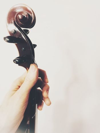 hand holding violin neck Musical Equipment String Instrument Classical Music Violin Scroll Violin Neck Violin Human Hand Hand One Person Human Body Part Holding Real People Indoors  Finger Human Finger Body Part Close-up Unrecognizable Person Copy Space Arts Culture And Entertainment White Background