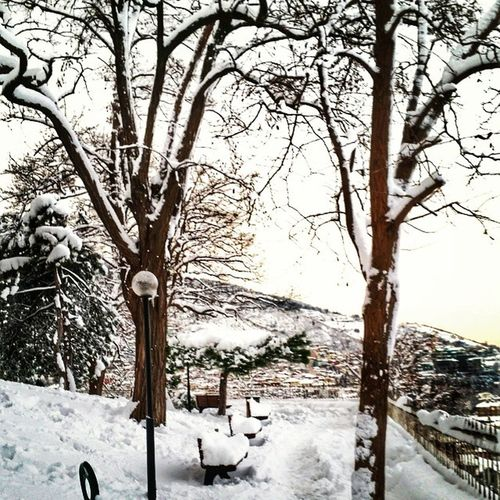 Bursa Bursakar Karmanzarası Snow Snowtrees Snowscenery Snowscene