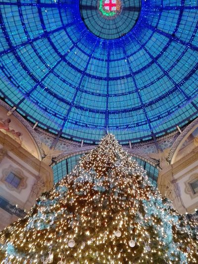 Low Angle View Ceiling Illuminated Christmas Architecture Indoors  Christmas Decoration Built Structure Christmas Tree Dome Celebration Christmas Ornament Hanging No People Day 08/12/2017 Pontedell'immacolata Huaweiphotography Huawei P8 Lite Natale 2017 Milano Galleria Milano Albero Di Natale Swarovski Swarovski Xmas Ornaments