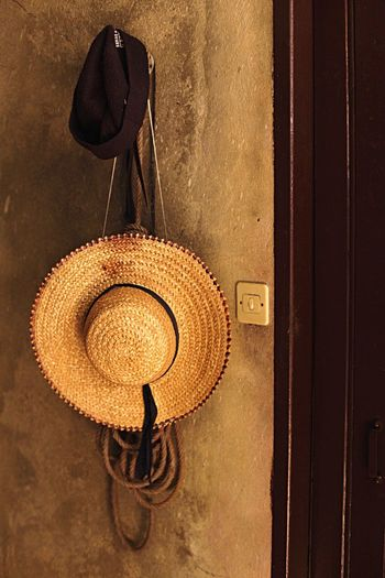 Close-up of hat mounted on wall