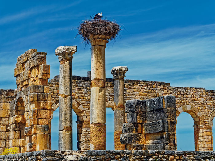 History The Past Old Ruin Architecture Built Structure Ancient Sky Old Architectural Column Damaged Ruined Ancient Civilization Bad Condition Run-down Weathered No People Day Travel Destinations Nature Abandoned Deterioration Archaeology Outdoors