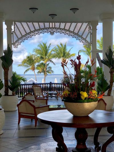 Sea View from Colonial setting Plant Table Potted Plant Architecture Indoors  Tree Nature Chair No People Day Seat Decoration Built Structure Furniture Water Luxury Flooring