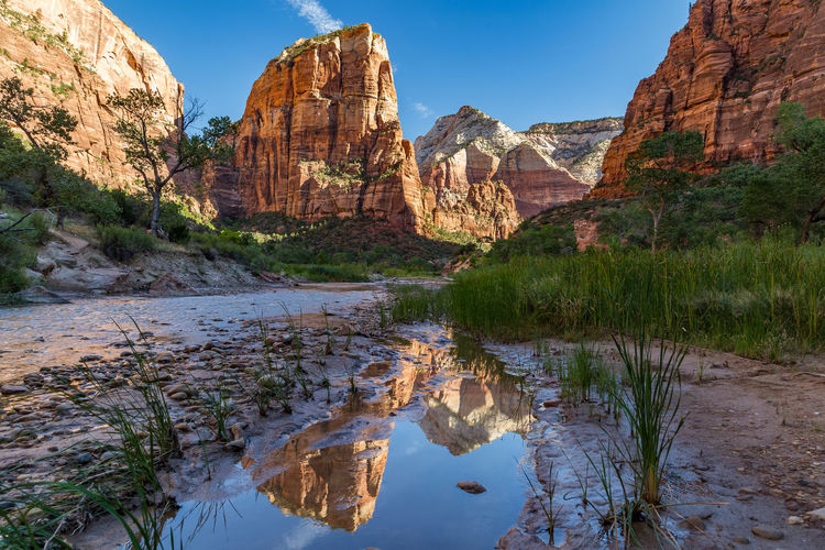 The Virgin River winds through the floor of Refrigerator Canyon at Zion National Park in Utah Beauty In Nature Canyon Green Color Hiking Lake Landscape Natural Disaster Nature No People Outdoors Reflections In The Water Rock - Object Sky Summer Travel Destinations Utah Vacations Virgin River Water Zion National Park