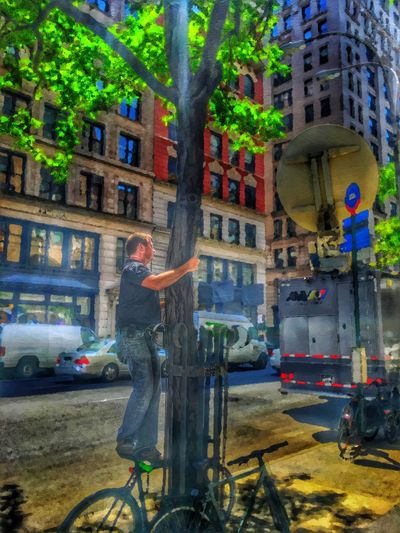 Embrace a Tree today - 7/20/16 As I Sees It EyeEm StreetPhotography, NYC Fresh On Market July 2016 IPhone Creative Edits W/ Snapped 'n' Enlight Malephotographerofthemonth Opportunistic Images On The Go