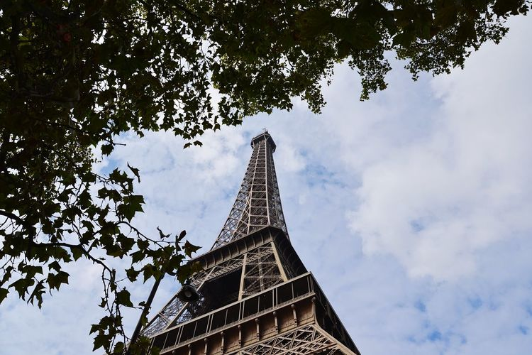 Eifel Paris Eifel Tower Tourism City Tree Pyramid History Sky Architecture Building Exterior Built Structure Travel Architectural Feature Triangle Shape Tower Pyramid Shape Architectural Design Tall - High