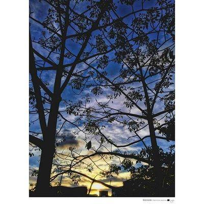 【交織】 Sunset 365Snap