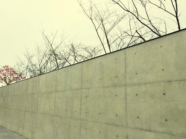 极净的清水墙