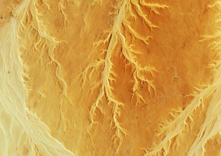Backgrounds Full Frame Abstract Textured  Pattern Close-up No People Nature Yellow Fiber Indoors  Day