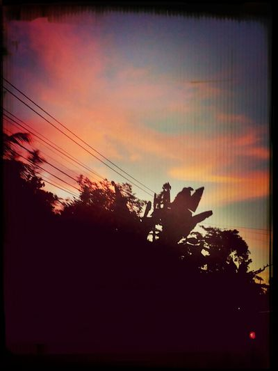 sunset.. Check This Out