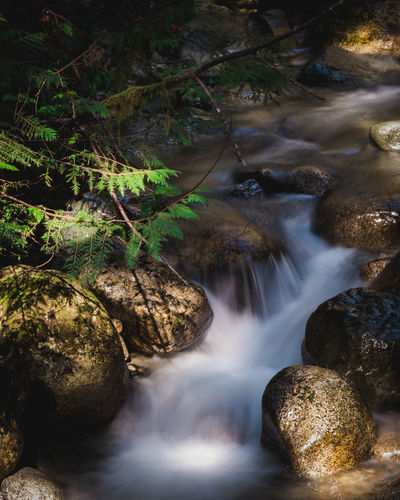 Trails Beauty In Nature Blurred Motion Day Falling Water Flowing Flowing Water Forest Land Long Exposure Motion Nature No People Non-urban Scene Outdoors Power In Nature Rainforest Rock Rock - Object Scenics - Nature Solid Stream - Flowing Water Water Waterfall