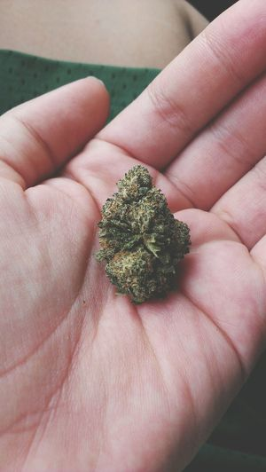Marijuana Iloveweed Smoke Weed
