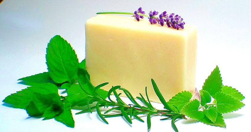 Salve bar from www.paleo-physis.com Herbal Herbalife Herbalism Natural Organic Natural Cosmetics Lotion Natural Lotion