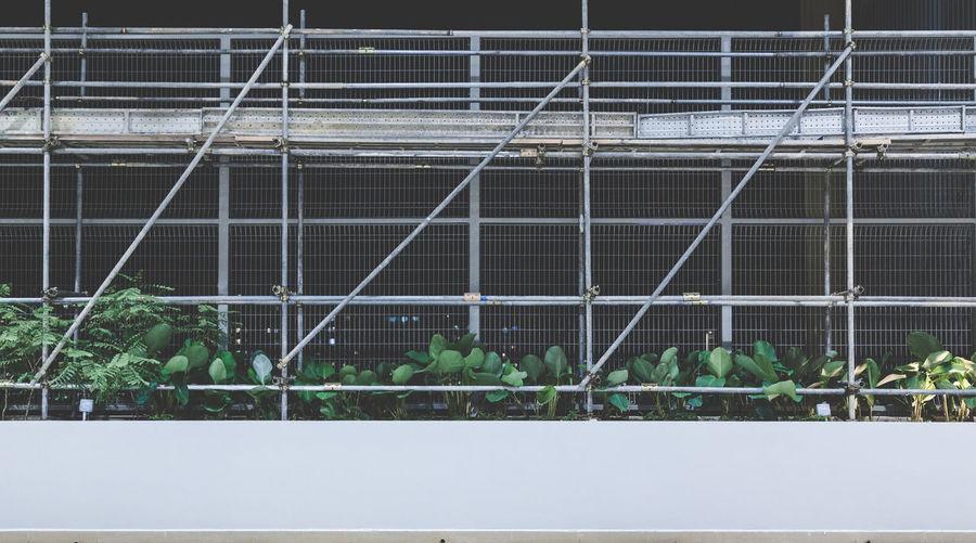 Metal scaffolding on wall