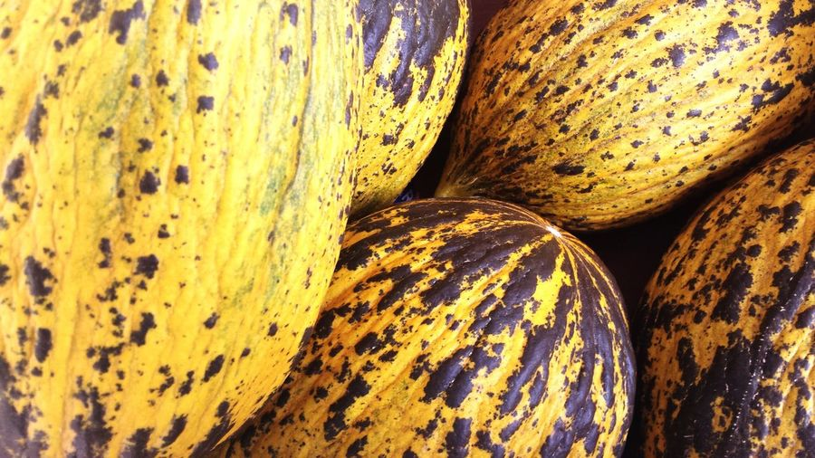 Close-up of squashes